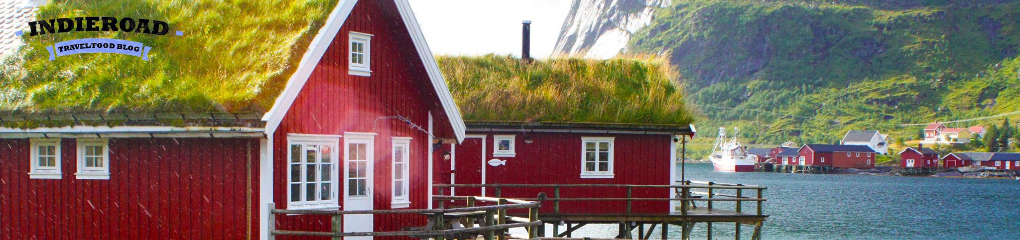 Norvegia banner