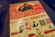 mao hunan milano ristorante cinese via porpora loreto (11)