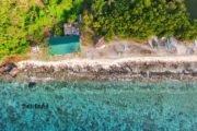 apo island filippine negros cosa vedere snorkeling (1)