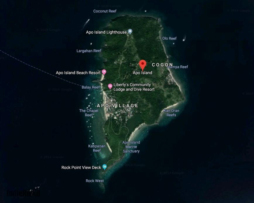 apo island snorkeling filippine dove dormire consigli come arrivare