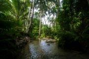 cosa vedere a siquijor filippine lugnason falls (3)